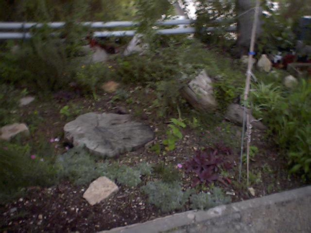 Сады Марголина